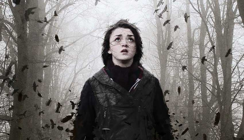 corvidae_maisie_williams