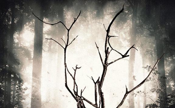 Rootwood-Artwork