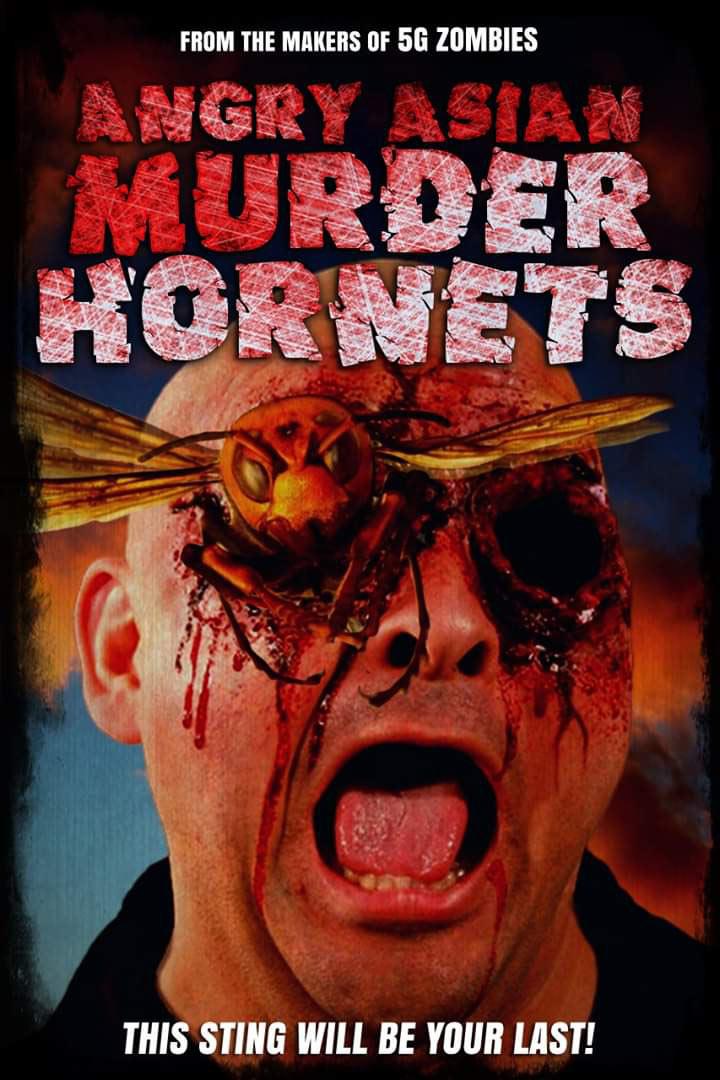 asian-murder-hornets