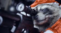 killer-raccoons-2-still