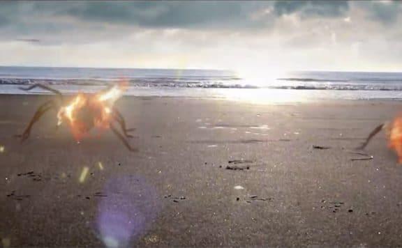 ARACHNADO:2: FLAMING SPIDERS – Teaser Trailer Release!!